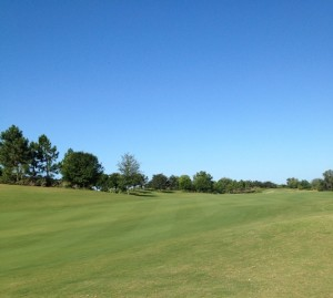 Number 11 Fairway Quality of Cut